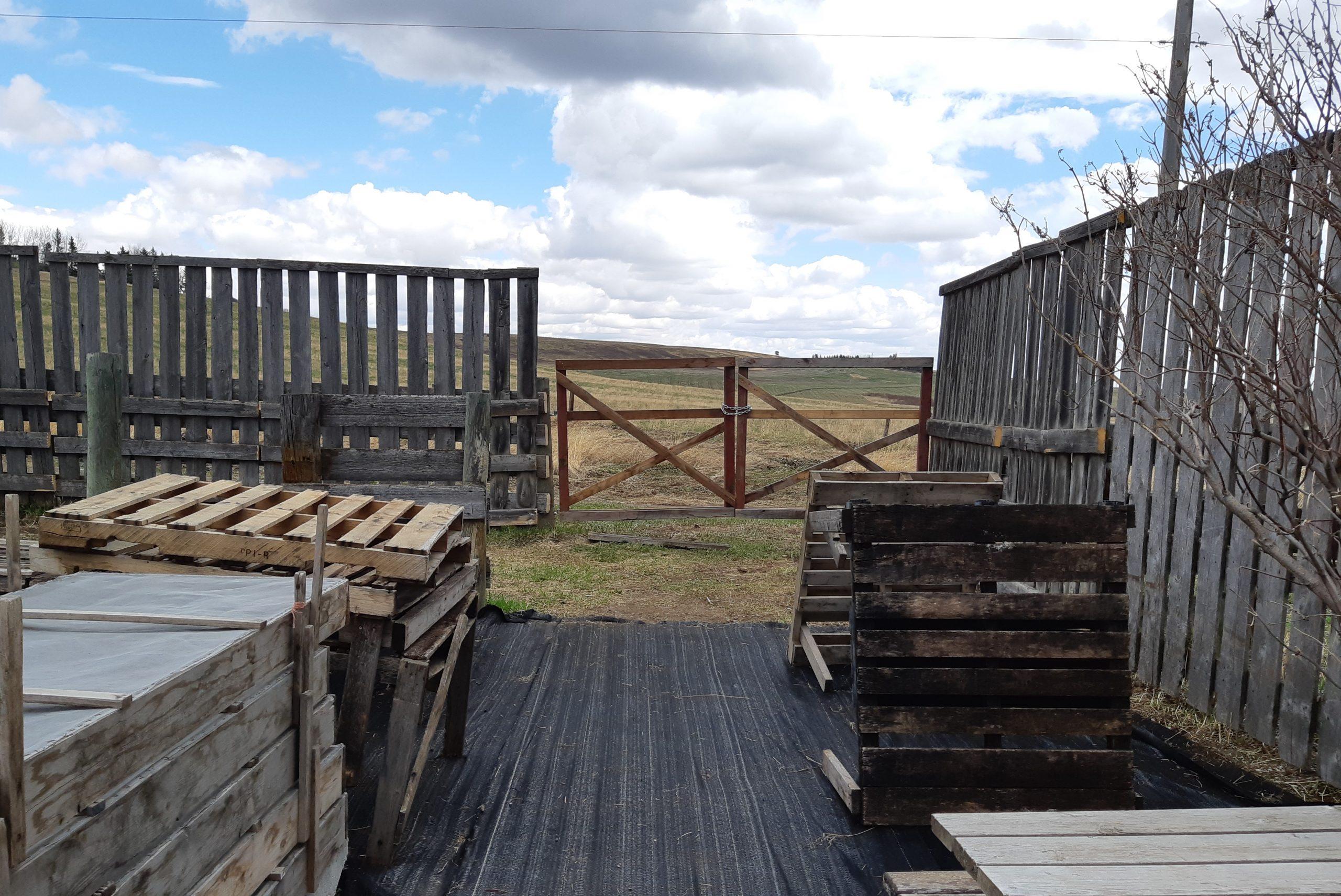 Bearspaw Nursery Fencing Update